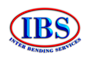 Logo IBS 3D3